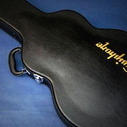 Borse e custodie per chitarra