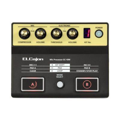 ROLAND EC10M